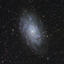 M33 Triangulum Galaxy,                                Dan Crosse