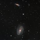 M81 and M82,                                bryanthomasjd