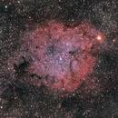 IC1396 - Elephant Trunk Nebula,                                JD