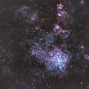 NGC 2070 - Tarantula Nebula in LRGB,                                oystein