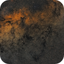 Barnard 295 and friends - Dark structures at the heart of the Milky Way,                                Fritz