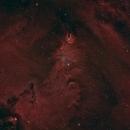 Christmas Tree NGC2264,                                TimothyTim