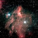 The Pelican Nebula  IC5070 ,                                Tony B