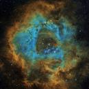 NGC2237,                                David Barmore