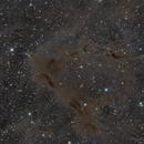 Heaven Within ( LDN 1158 and surroundings ),                                Reza Hakimi