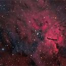 Emission Nebula NGC 6820,                                  Randal Healey