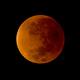 Eclipse Lunar,                                José Mª Mendoza