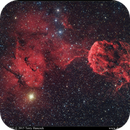 JellyFish Nebula IC443 and IC444,                                Terry Hancock