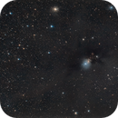 NGC 1333,                                  Scotty Bishop