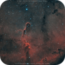 IC 1396 - vdB 142 The Elephant's Trunk Nebula,                                Salvatore Cozza