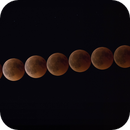 Collage of the Lunar eclipse,                                Petar_Babic