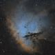 NGC 281 in SHO,                                Frank Zoltowski