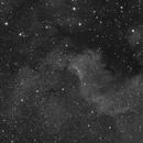 NGC 7000,                                BlueApoc
