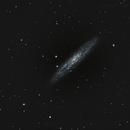 Sculptor Galaxy - NGC 253,                                Tiago Ramires Domezi