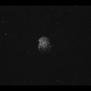 A lonely Monkey Head Nebula NGC 2175 wide field Ha,                                Göran Nilsson
