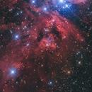 NGC 1999,                                Toshiya Arai