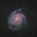 M101 The Pinwheel Galaxy in HaRGB,                                Chad Leader