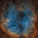 IC 1396,                                  Rodd Dryfoos