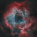 The Rosette Nebula in H(HOO),                                Andreas Eleftheriou