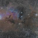 "IC348-NGC1333,                                Makoto""G-H""Shindou"