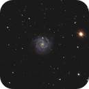 NGC 3184 - Intermediate spiral galaxy in Uma,                                Benny Colyn