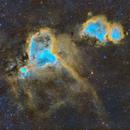 Wide Field in Cassiopeia - The Heart and Soul Nebula in SHO,                                Cfosterstars