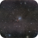 NGC1333 - QHY163 - Esprit 80,                                Eric Walden