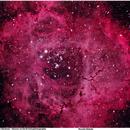 Rosette Nebula,                                Uri Abraham