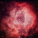 Caldwell 49 - The Rosette Nebula,                                Kriss Bennett