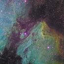 Pelican Nebula alias IC 5070,                                Riccardo A. Balle...