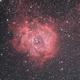 NGC 2244 in TTK 144.5,                                Che Wei WU