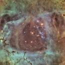The heart of ngc 2239  Rosetta nebula SHO color,                                Chassaigne
