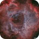 Rosette Nebula HOO v2.0,                                  Alan Pham