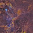 Crescent Nebula in Cygnus,                                Sendhil Chinnasamy