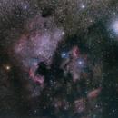 NGC 7000 unmodified,                                Gendra
