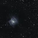 NGC 7023 Iris Nebula,                                Pekka Sunila