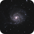 Pinwheel Galaxy - M101,                                Rob Calfee