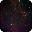 NGC1499 with Atik Infinity Live Video CCD,                                Dave