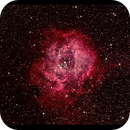 Rosette Nebula,                                Mike Long