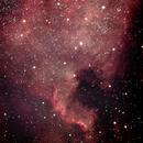 NGC7000 North American Nebula,                                Richard