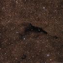 Barnard 252 - Dolphin Dark Nebula,                    Gary Imm