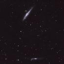 Whale Galaxy - NGC4631,                                NewfieStargazer
