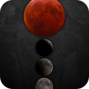 Super Blood Wolf Moon Eclipse in 4 Phases,                                Douglas J Struble