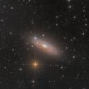 NGC 2841,                                Nippo81