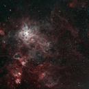 Tarentula Nebula,                                Yann-Eric BOYEAU