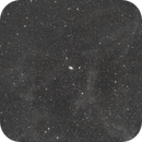 M81 & M82 Widefield,                                Joey Conenna