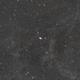 M81 & M82 Widefield,                                nachtmerrie