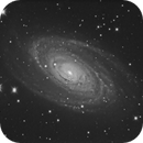 M81, first light with the GSO RC8,                                Salvatore Iovene