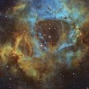 Rosette Nebula,                                Rodrigo Andolfato