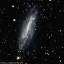 NGC 4236,                                Wulf